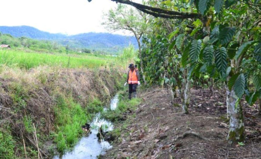 WHO Dukung Pemberantasan Schistosomiasis di Indonesia