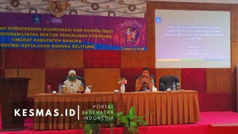 Koordinasi Lintas Sektor Dan Lintas Program Penurunan Stunting Di Era Adaptasi Kebiasaan Baru