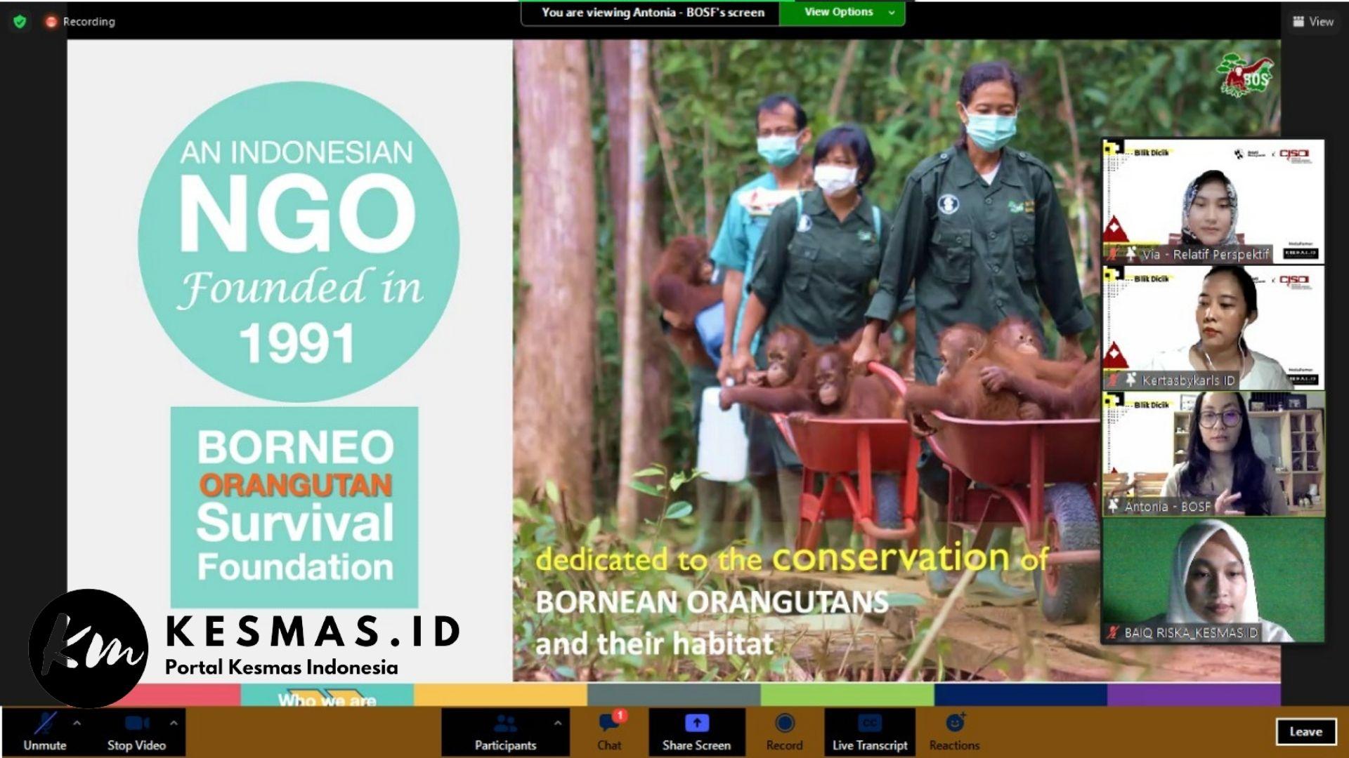 Yayasan BOSF (Borneo Orangutan Survival Foundation)