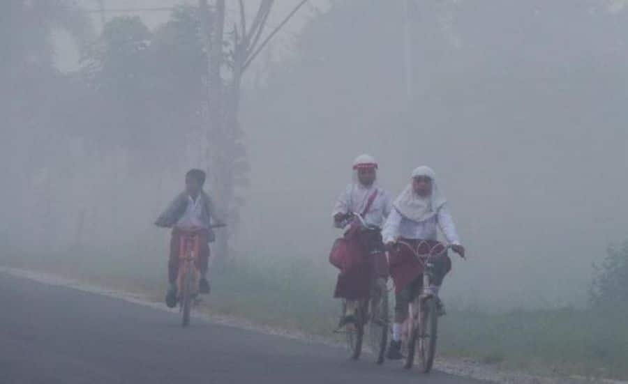 Dinkes Aceh Barat Mencatat 241 Warganya Terkena ISPA Akibat Kebakaran Hutan