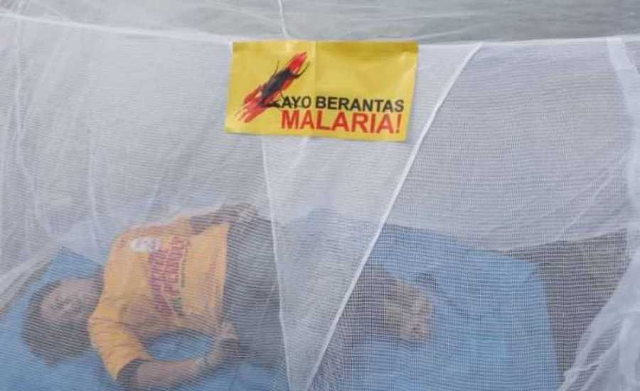 Kemenkes Kirim 1 Juta Kelambu Untuk Tekan Angka Malaria di Papua
